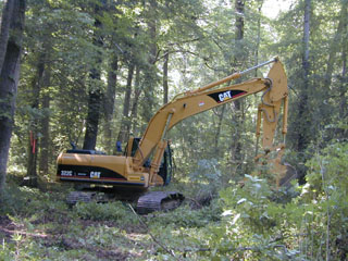 Restoration activities at Duke Forest